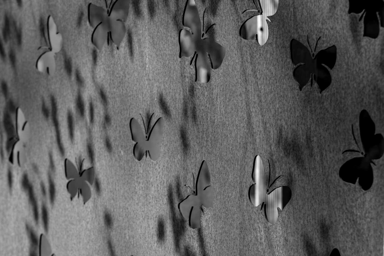 rouwfotografie Achterhoek - vlinders op de muur